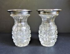 Pair of Antique Silver Rimmed Vases