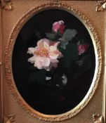 "James Stuart Park 1862-1933, Oil on Canvas ""Pink roses"""