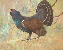 Original signed watercolour by Ralston Gudgeon, RSW (1910 – 1984) Capercaillie
