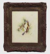 Framed Songbird Watercolour by Royal Worcester Artist Peplow