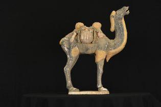 Terracotta Camel
