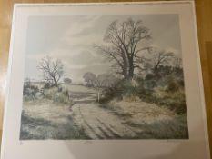 Gerald Hughes Limited Edition Print 'Gateway'.