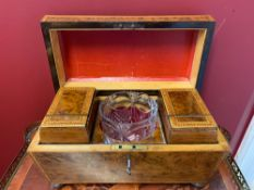 Tea Caddy, with a glass mixing bowl, Yew wood.