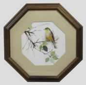 Bird Print Set in Octagonal Frame