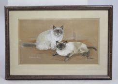 Original Artwork Siamese Cats Framed