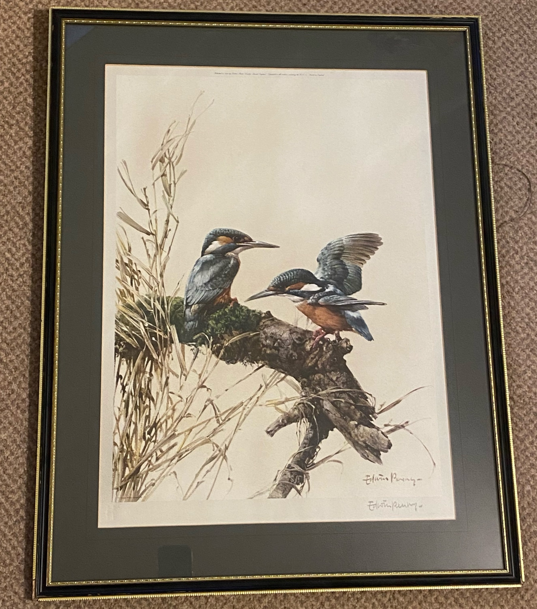 """Edwin Penny Large pencil signed print """"Kingfishers"""" - Image 3 of 3"""