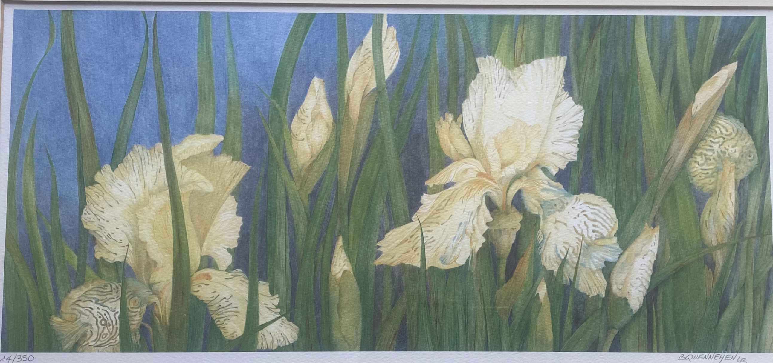 Brigitte Quennehen floral art print Discus