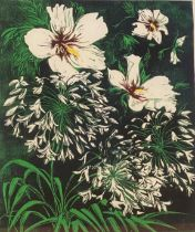 """Sue Clark Limited edition screen print """"agapanthus and hibiscus"""""""