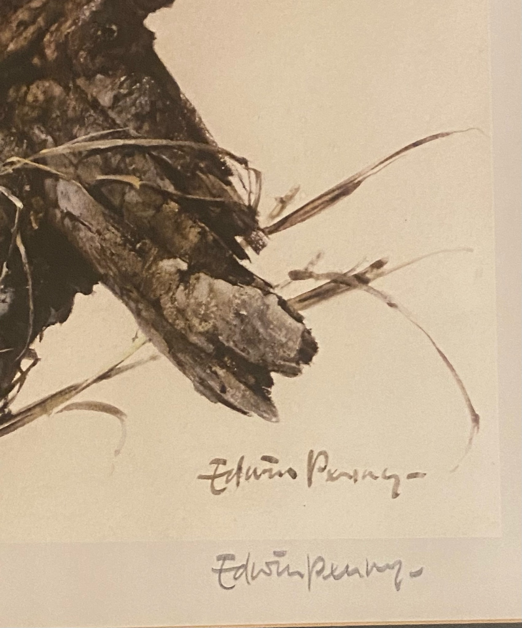 """Edwin Penny Large pencil signed print """"Kingfishers"""" - Image 2 of 3"""