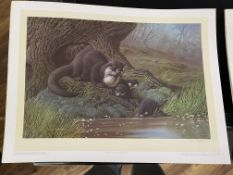 Otters by C David Johnston Limited Edition Print