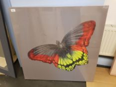 Butterfly Print On Canvas 860 X 860mm
