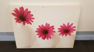 Pink Cape Daisies Canvas Print By Alyson Fennell 2015 (800 X 600 X 20mm)