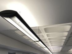 Modern Suspended strip lighting 9 sections.