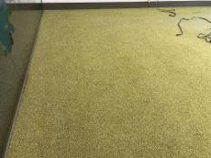 Green carpet tiles 4.8m x 4.4m