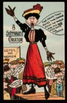The National Union of Women's Suffrage Societies. (NUWSS).