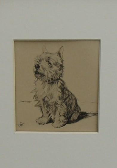 Skye Terrier. Framed Pen & Ink Drawing. - Image 2 of 3