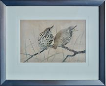 RALSTON GUDGEON RSW (SCOTTISH 1910 - 1984), Perching Thrushes, Signed Water Colour