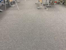 Grey Carpet Tiles VGC.