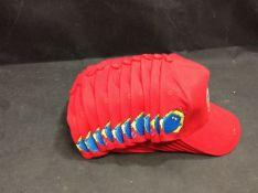 20x Tweenies Hats