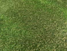 25x4m roll Playrite Nearly Grass Premium Artificial grass 35mm thick