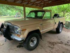 1981 American Motors Jeep J10 Pickup