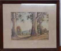 Arnold Henry Jarvis (1881-1959) Australian, 'Landscape with red gums', signed lower left,
