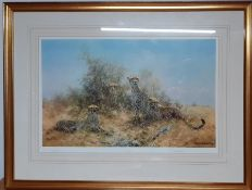 """David Shepherd Limited edition, signed and numbered print """"Cheetah"""" (46x71 cm)."""