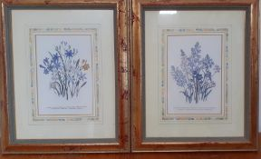 A pair of prints in a glided frame, (19x12.5 cm). (2)