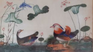 A group of four Chinese paintings of birds, framed and glazed (19x31 cm). (4)