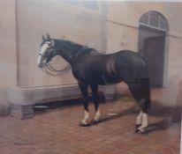 """Sefton"", a print after Campbell Fraser, signed and numbered 25/850, framed and glazed, (49x59 cm)."