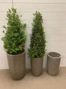 A set of three garden planters (50cm H x 25 cm dia for largest)