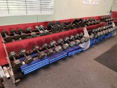 Lot - (50) 5 lb. to 100 lb. Dumb Bells with (3) Racks (Weight Room 105)