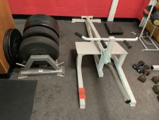 Promaxima T Bar Row with Weights and Rack (Weight Room 105)
