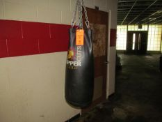 Upper Cuts Gold Punching Bag (Outside Weight Room 105)