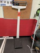 Health-O-Meter 300 lb. Scale (Weight Room 105)