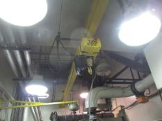 Yale 2-Ton Electric Chain Hoist with Monorail