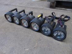 6 x Wolf & Mica Safety Torches as shown