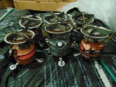 6 x Coleman Stoves
