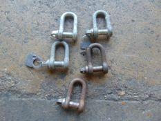 5 x 1.5T D shackles