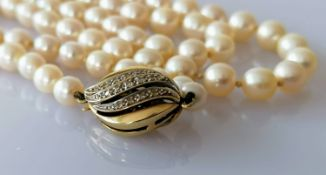 A mid-century single row of eighty-three cultured pearls, measuring from 5.62mm to 9.05mm on a white