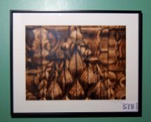 A 510mm x 410mm Framed and Glazed Abstract Photographic Print signed by the Artist D. Deguil