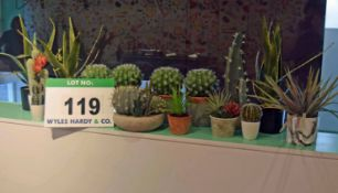A Collection of Sixteen Artificial Cacti in Pots